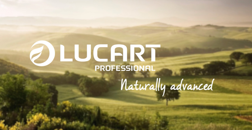 lucart professional vieo aziendale